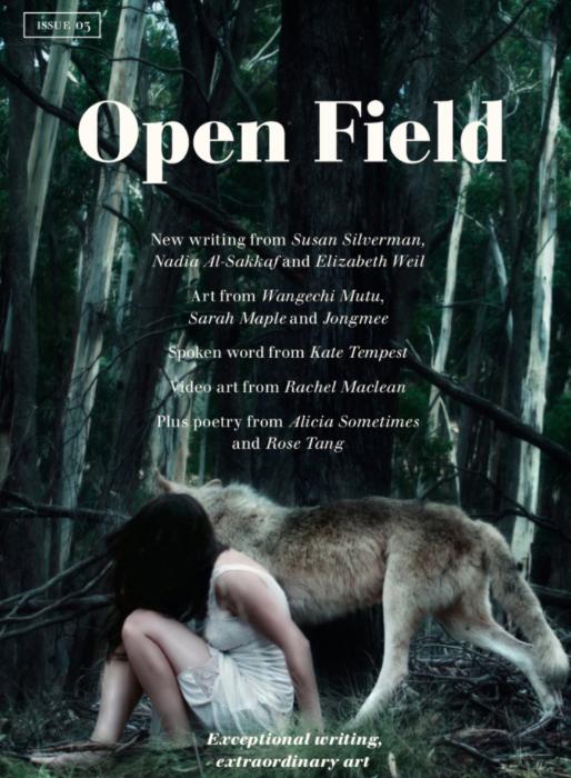 Interview with Kirsten Alexander, editor of Open Field magazine
